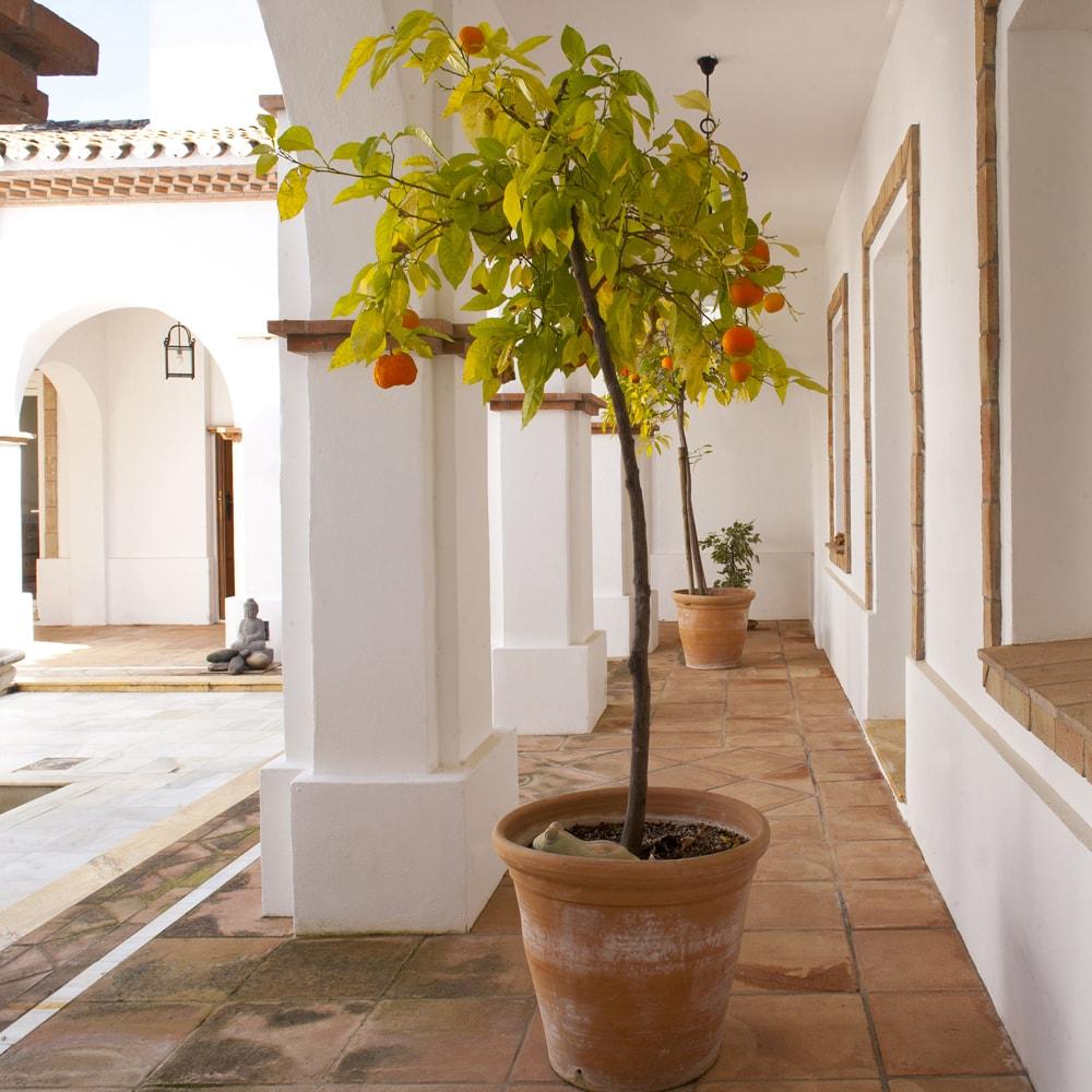 villas andalucia
