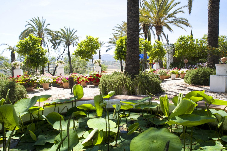 tropical garden ronda spain