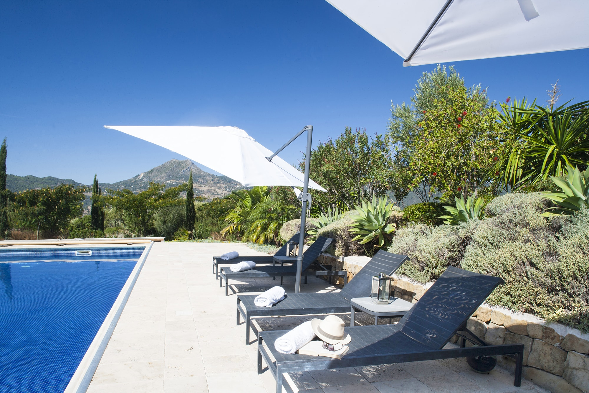 sun beds and umbrellas