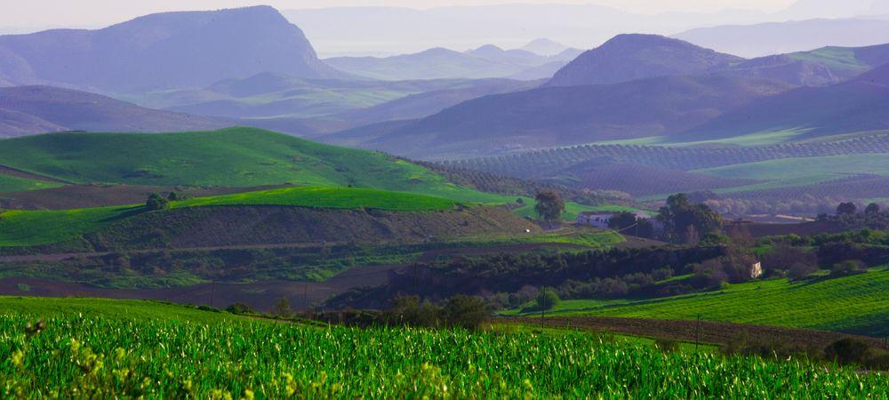 landscape serrania de ronda