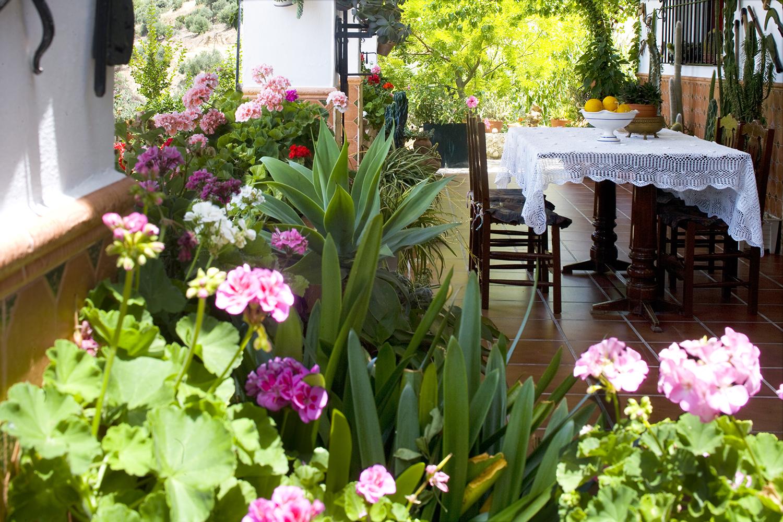 garden villa andalucia spain