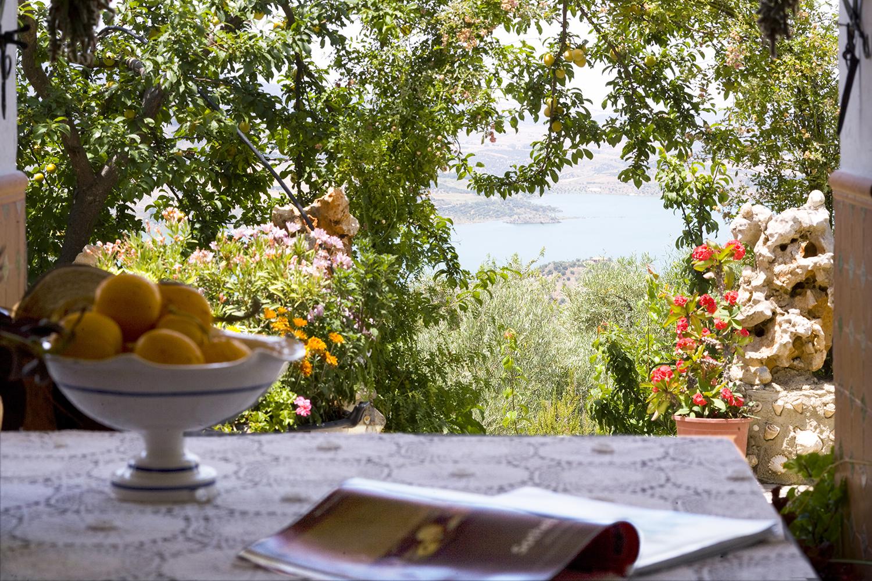 shady villa  terrace andalucia