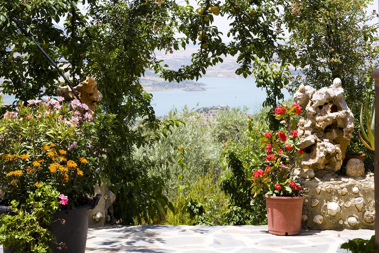 garden villa cactus spain