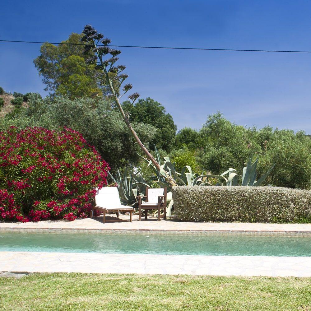 garden and pool at villa