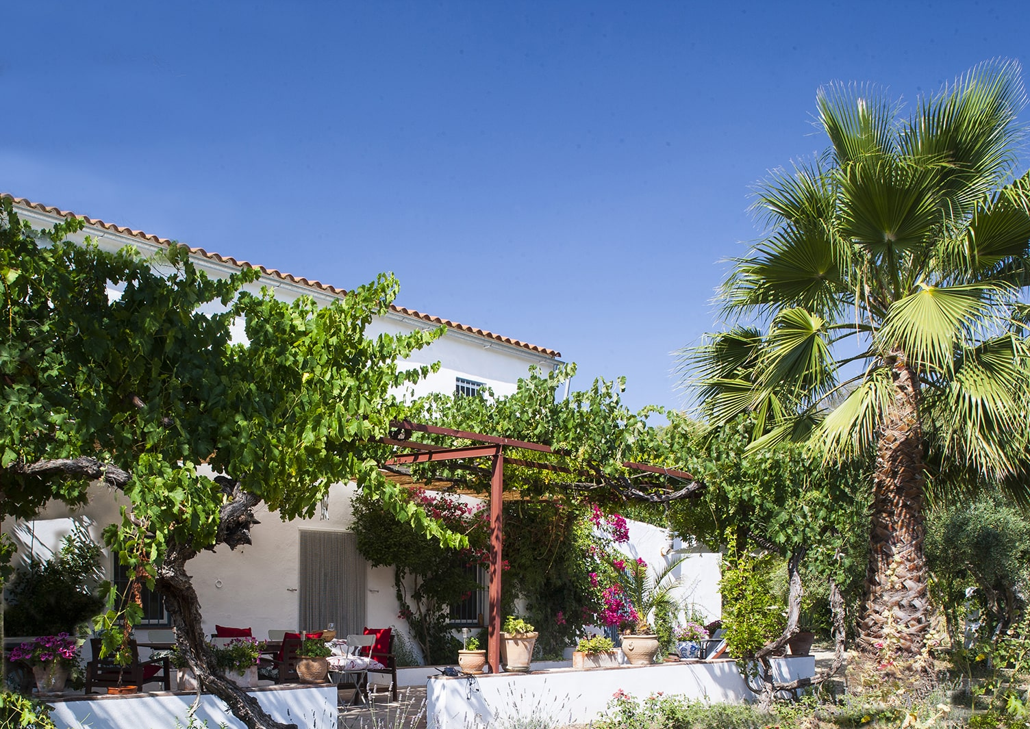 terrace at villa to rent andalucia