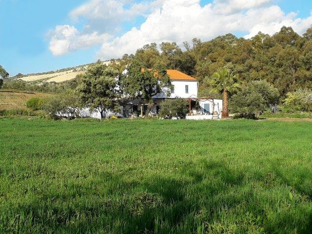 property to rent in countryside andalucia