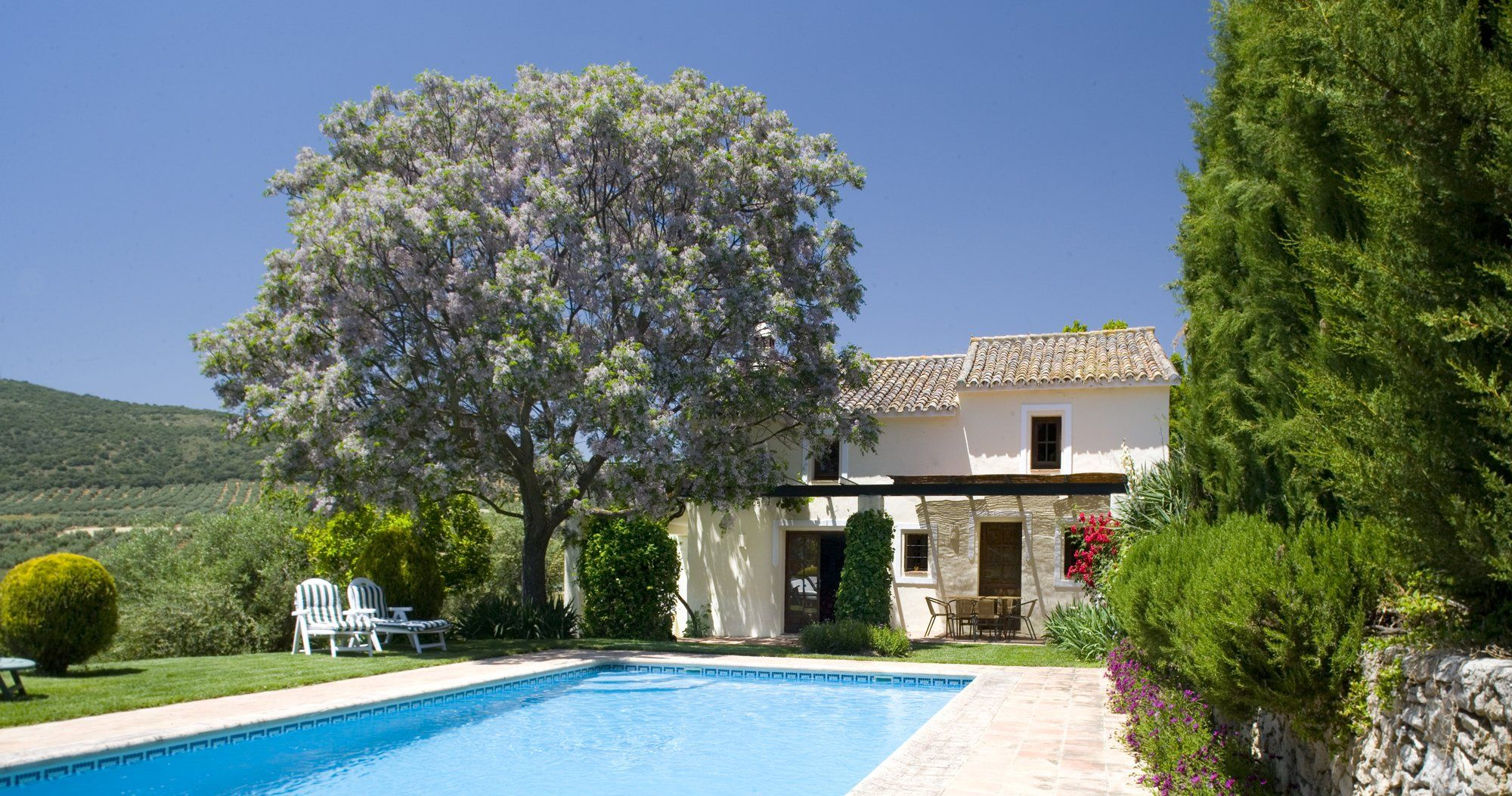 villa cottage ronda andalucia pool and facade