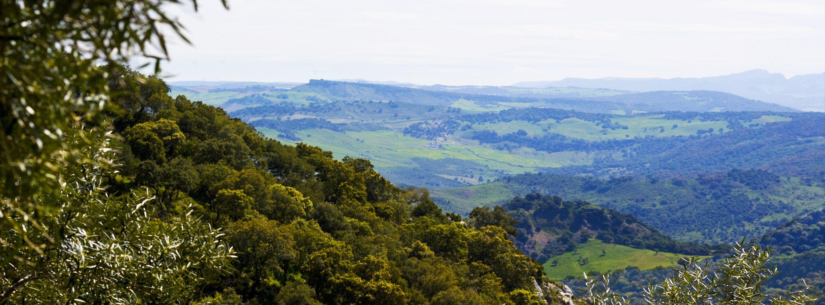 view grazalema national park