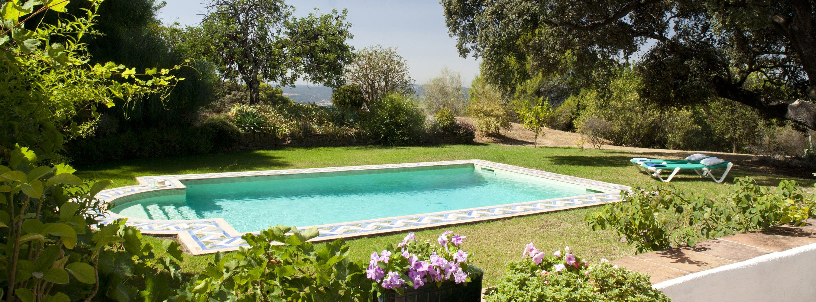swimming pool with lawn