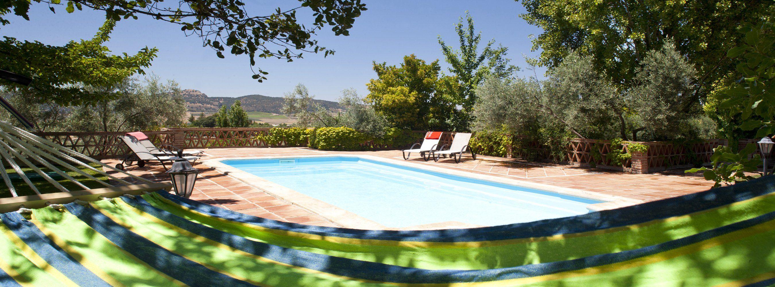pool and hammock